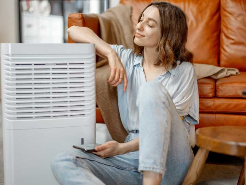 What To Look For In An Air Purifier For $500?
