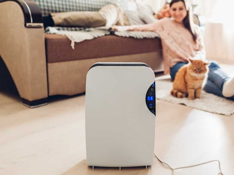 Choosing the Best Air Purifiers Under $50- Which Air Purifier Should I Buy?