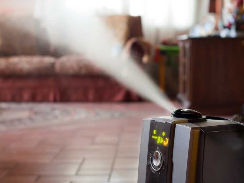 Why Do You Need An Air Purifier With A Humidifier?