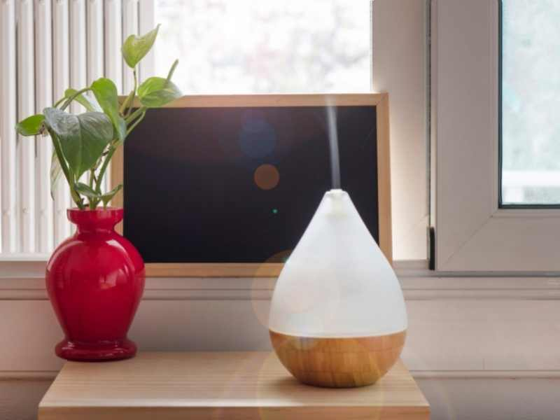 Humidifier vs. Air Purifier: Which Is Better?