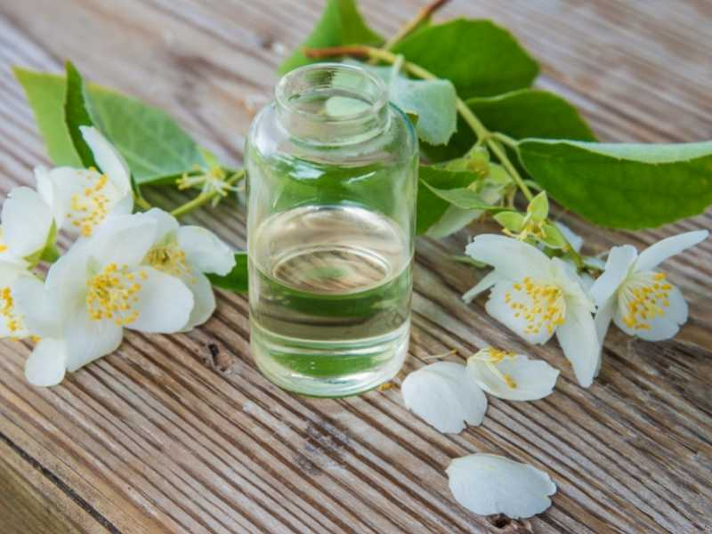 What Essential Oil Will Purify The Air? Air Purifiers!