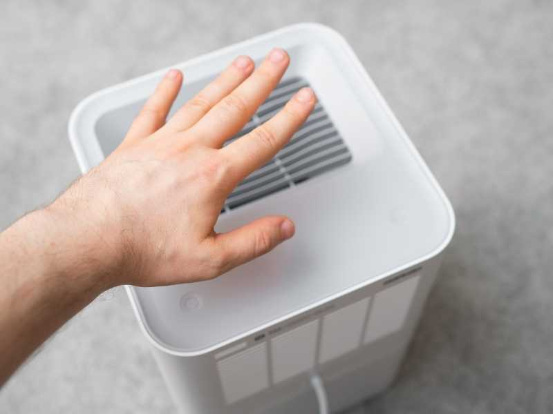 What are the benefits of having an air purifier?